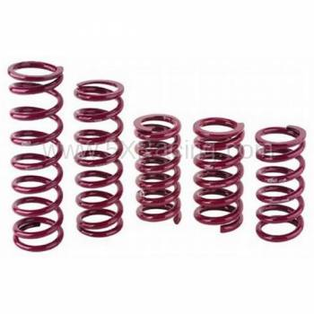 "Eibach Suspension - Eibach 2.5"" ID Race Springs (7"" free length)"
